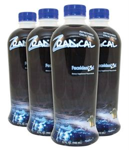 Picture of ZRadical 4 Bottle Pack (1 Case)